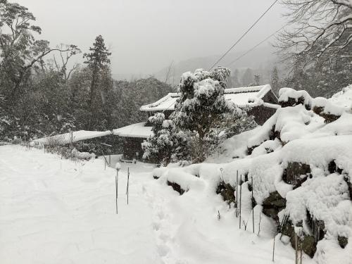 長崎は5年ぶりの大雪〜9日の雪景色_d0336460_01073653.jpeg