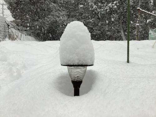 長崎は5年ぶりの大雪〜9日の雪景色_d0336460_01083286.jpeg