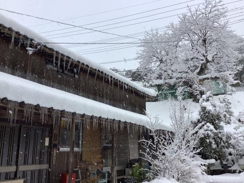 長崎は5年ぶりの大雪〜9日の雪景色_d0336460_01262281.jpeg