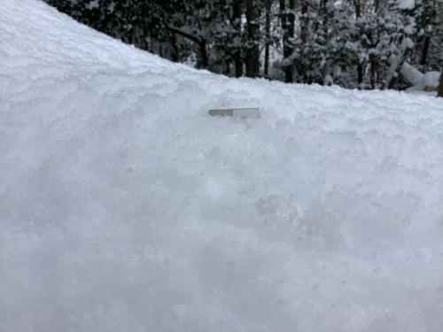 長崎は5年ぶりの大雪〜9日の雪景色_d0336460_01270393.jpeg