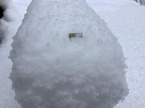 長崎は5年ぶりの大雪〜9日の雪景色_d0336460_01275233.jpeg