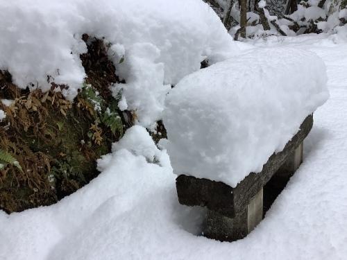 長崎は5年ぶりの大雪〜9日の雪景色_d0336460_01285290.jpeg