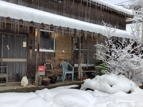 長崎は5年ぶりの大雪〜9日の雪景色_d0336460_01323564.jpeg