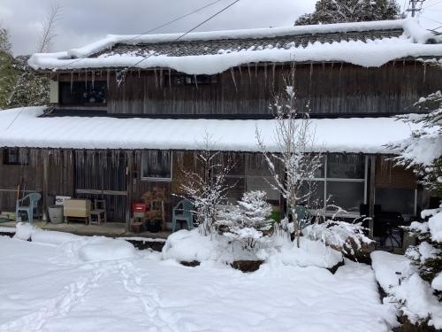 長崎は5年ぶりの大雪〜10日の氷柱_d0336460_15112698.jpeg