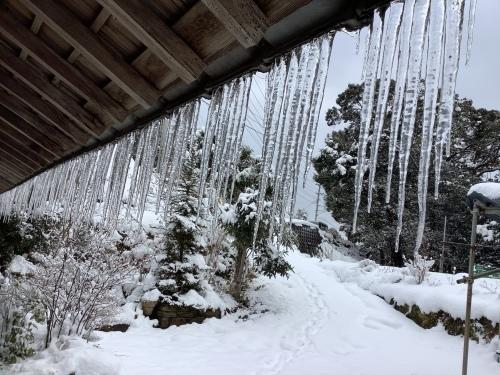 長崎は5年ぶりの大雪〜10日の氷柱_d0336460_15245185.jpeg