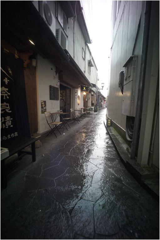 875.02 生き生きと(2020年5月30日ホロゴン15mmF8は勝手知ったる奈良町をのびのび散歩)2 心に音楽を_c0168172_01073687.jpg