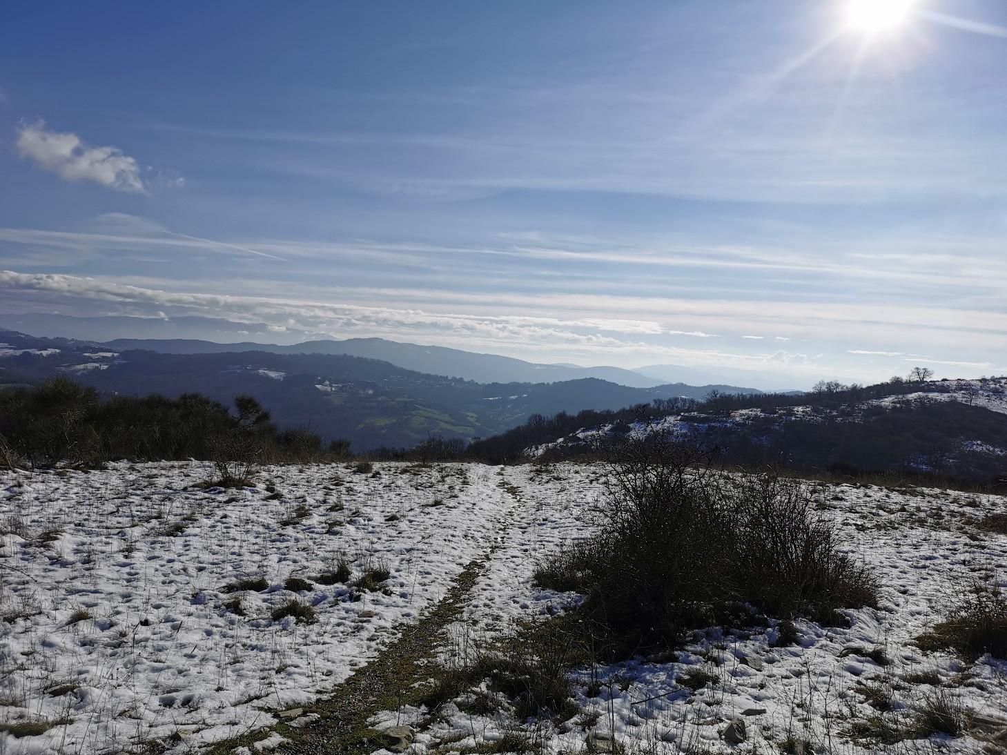 ラーラと山散歩_f0106597_02104847.jpg