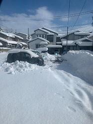 寒波襲来、記録的豪雪― 被害に遭われた方に心からお見舞い申し上げます_c0133503_07252149.jpg