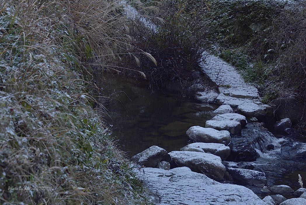 淡雪の飛鳥川_a0212036_15324049.jpg