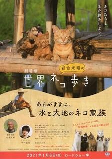『岩合光昭の世界ネコ歩き/あるがままに、水と大地のネコ家族』(2021) _e0033570_08121778.jpg