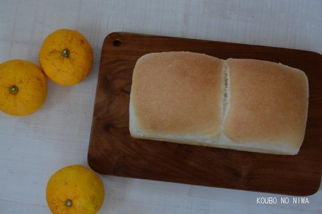 柚子酵母でシュトーレン、スコーン、酵母食パン_f0329586_12462965.jpg