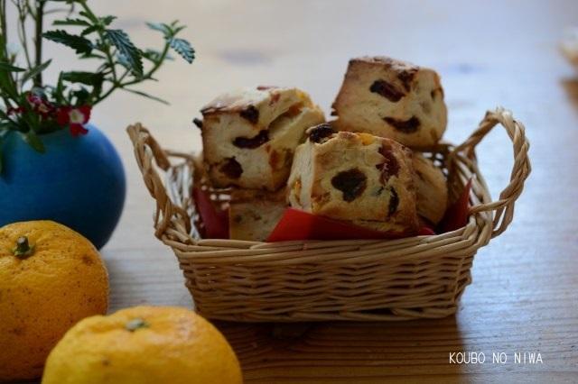 柚子酵母でシュトーレン、スコーン、酵母食パン_f0329586_12511290.jpg