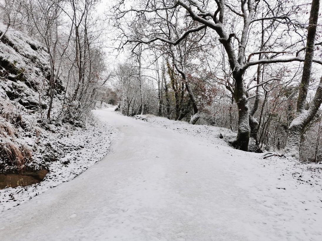 雪山登山な帰り道_f0106597_00593743.jpg