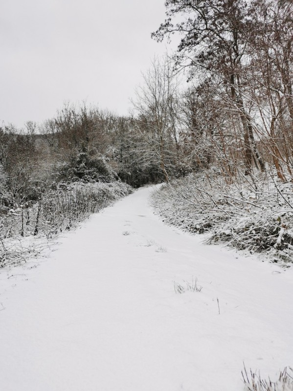 雪山登山な帰り道_f0106597_01015176.jpg
