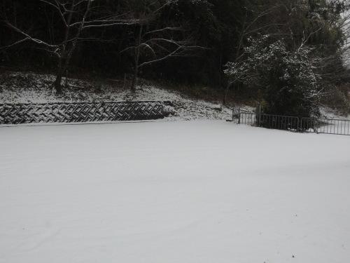 雪景色_b0287904_10500802.jpg