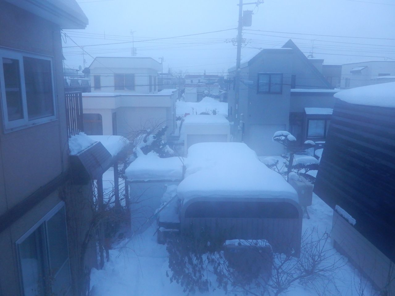17日続いた真冬日からようやく抜けました_c0025115_21193241.jpg