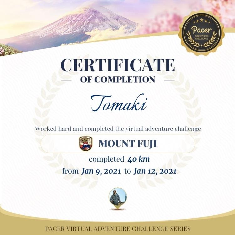 富士山登頂!バーチャルですけど_c0060143_21381093.jpg