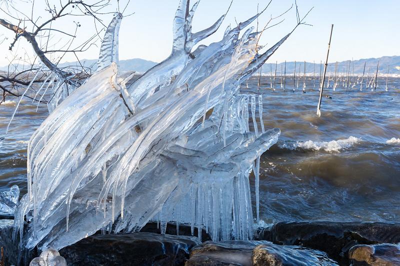 飛沫氷の造形美_f0155048_22264375.jpg
