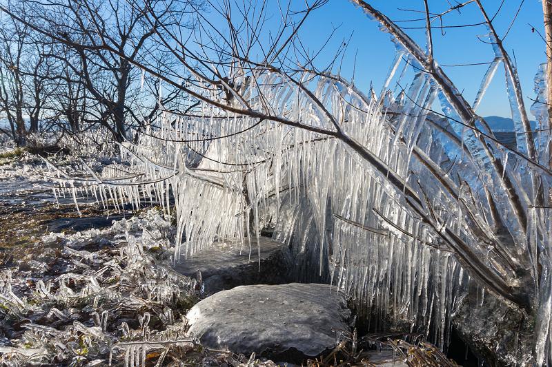 飛沫氷の造形美_f0155048_22282074.jpg