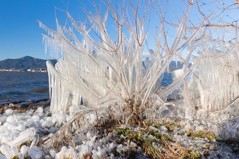 飛沫氷の造形美_f0155048_22291795.jpg