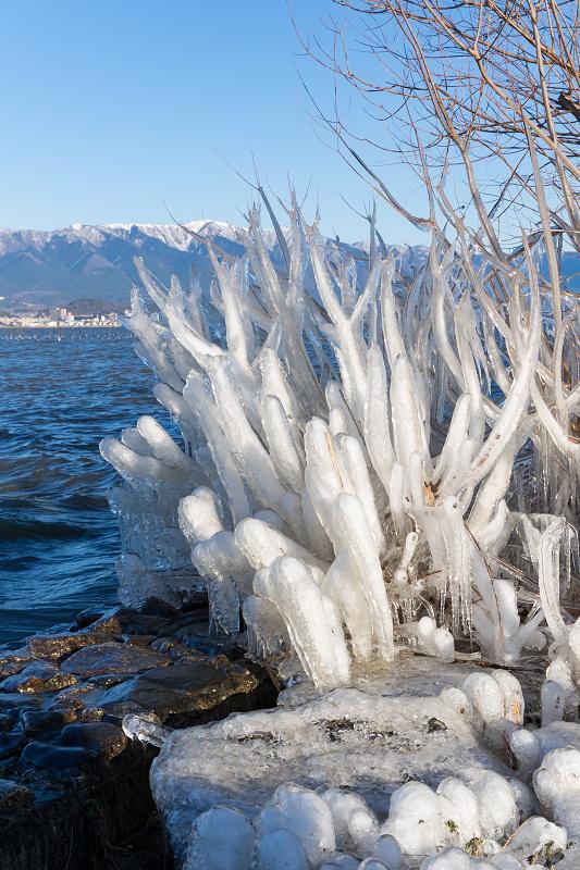 飛沫氷の造形美_f0155048_22294070.jpg