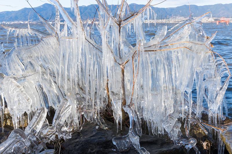 飛沫氷の造形美_f0155048_22304997.jpg