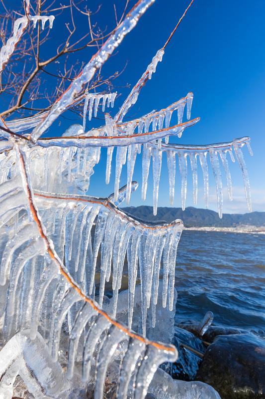 飛沫氷の造形美_f0155048_22305240.jpg