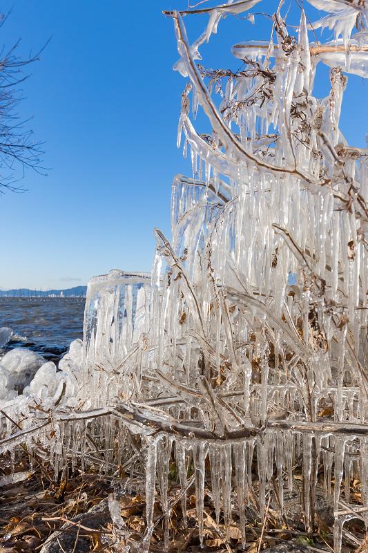 飛沫氷の造形美_f0155048_22310237.jpg