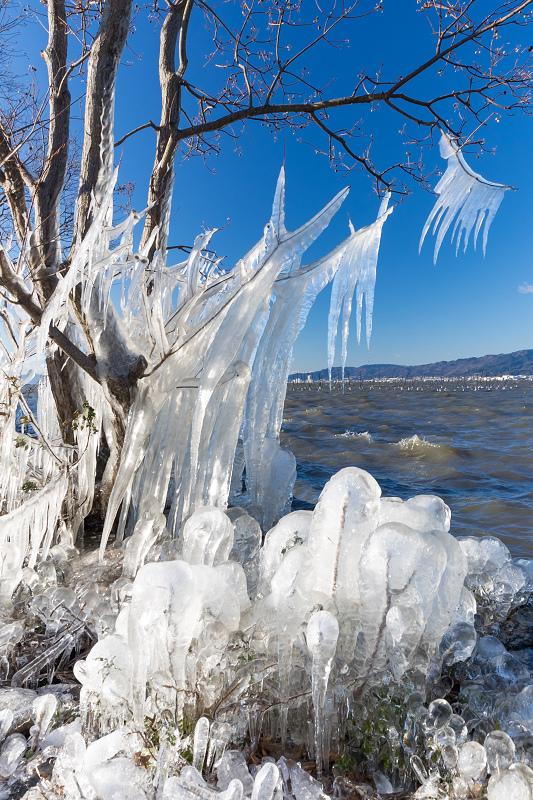 飛沫氷の造形美_f0155048_22312046.jpg