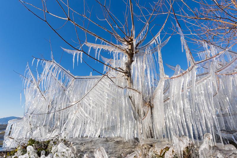 飛沫氷の造形美_f0155048_22321770.jpg
