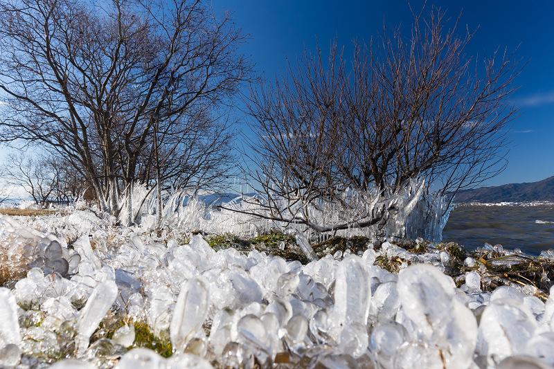 飛沫氷の造形美_f0155048_22322583.jpg