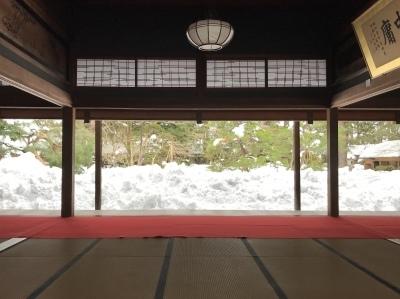 新潟は大雪_e0135219_15470333.jpg