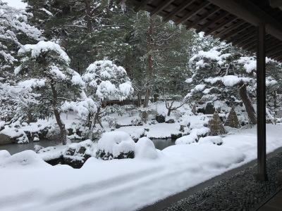 新潟は大雪_e0135219_15470724.jpg