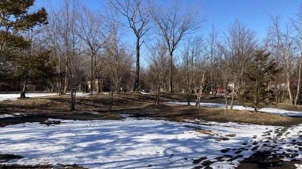 雪降るも雪解けのスピードいと早し。フィールドの様子は?_b0174425_14591358.jpg