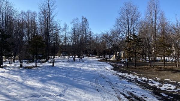 雪降るも雪解けのスピードいと早し。フィールドの様子は?_b0174425_15031268.jpg