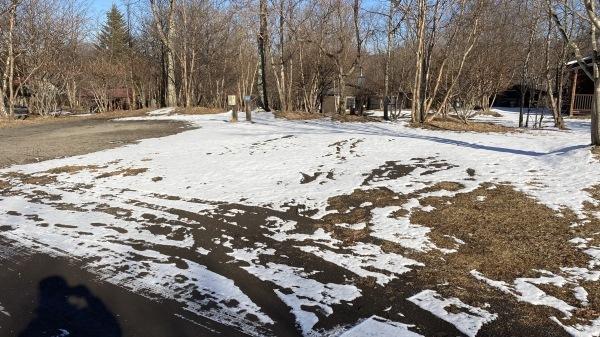 雪降るも雪解けのスピードいと早し。フィールドの様子は?_b0174425_15073139.jpg