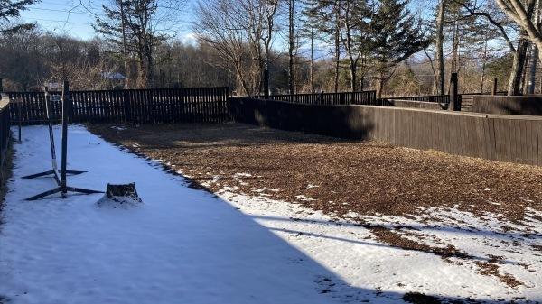 雪降るも雪解けのスピードいと早し。フィールドの様子は?_b0174425_15171015.jpg