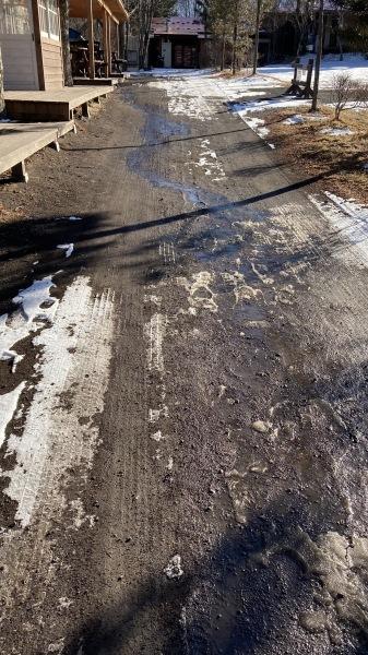 雪降るも雪解けのスピードいと早し。フィールドの様子は?_b0174425_15353628.jpg