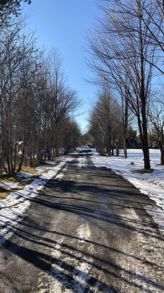 雪降るも雪解けのスピードいと早し。フィールドの様子は?_b0174425_15582805.jpg