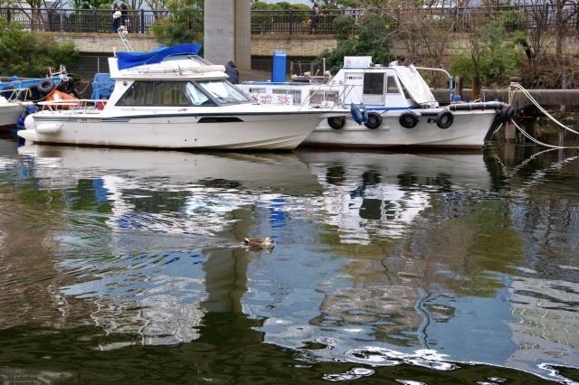 運河沿いの遊歩道_b0191026_16321651.jpeg