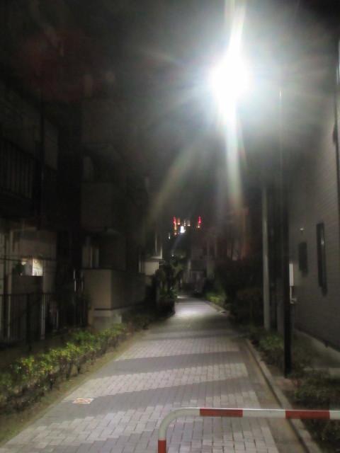葛飾区N様邸内装リフォーム現場近辺は静かな下町風情。_a0214329_15592895.jpg