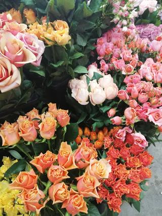 花の仕入れ_b0113510_14463778.jpg