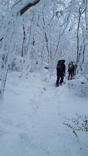 雪山便り_c0216213_23302407.jpg