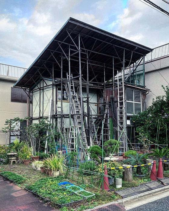 練馬区下石神井 / iPhone 11_c0334533_13171299.jpg