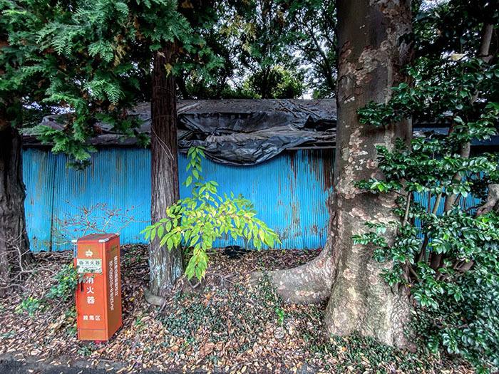 杉並区上井草 / iPhone 11_c0334533_13231211.jpg