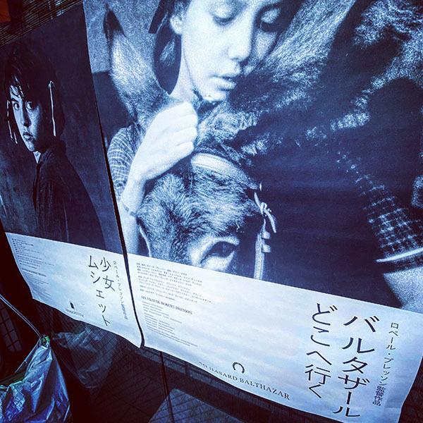 世田谷区北沢 / iPhone 11_c0334533_15113888.jpg