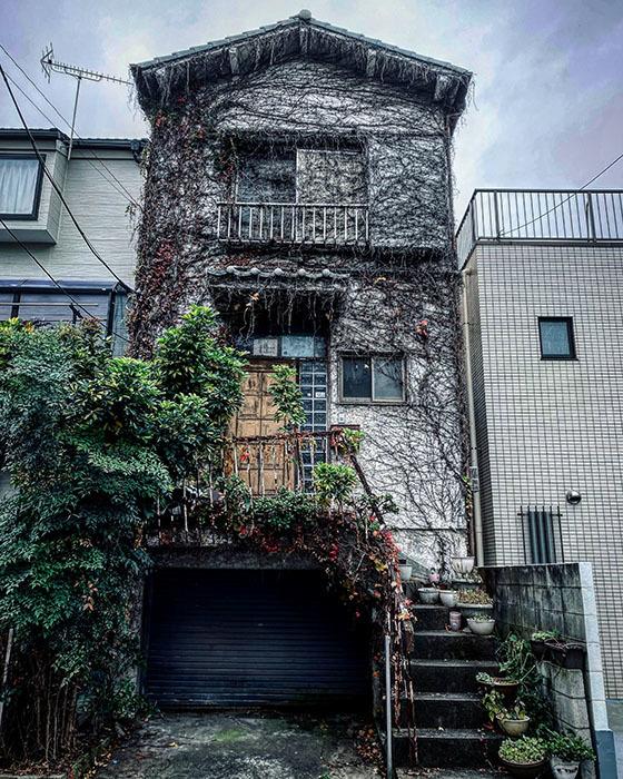 江戸川区西葛西 / iPhone 11_c0334533_17494181.jpg