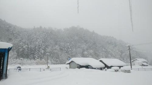 大雪に見舞われた年末年始でした。_c0300035_16414889.jpg