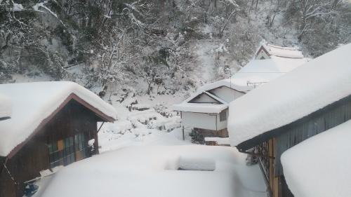 大雪に見舞われた年末年始でした。_c0300035_16425093.jpg