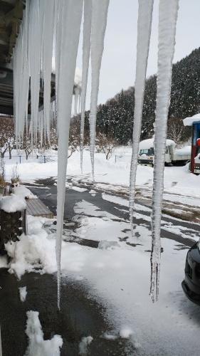 大雪に見舞われた年末年始でした。_c0300035_16430720.jpg